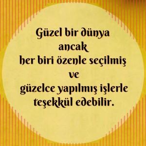 guzel_dunya