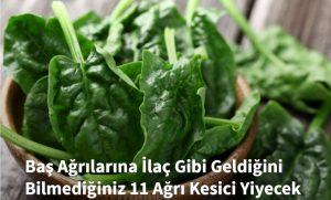 bas_agri_ilac