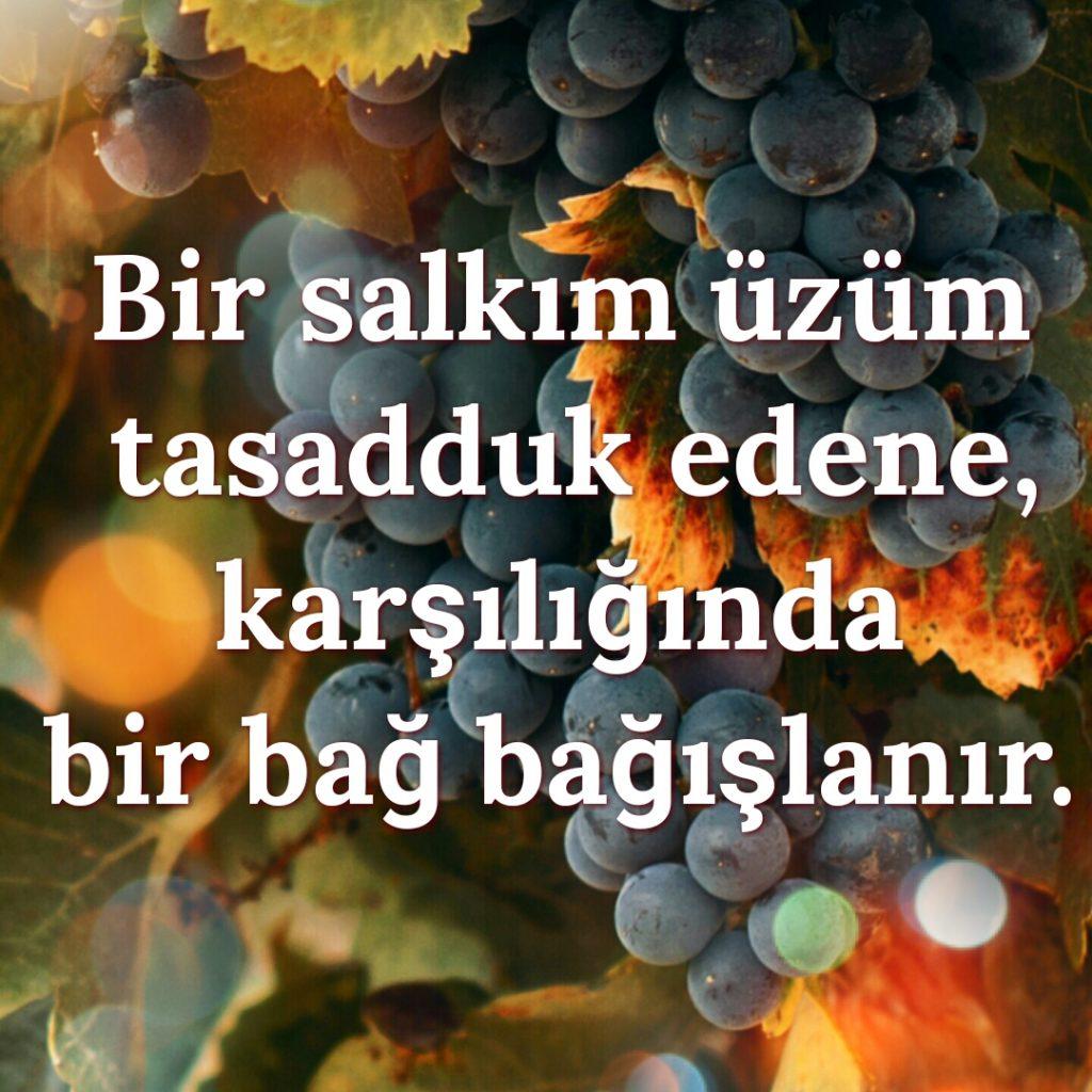 iyilik_uzum_bag