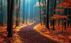 Geleceğimizin İnşa Edilmesinde Milli ve Medeni Yol Arayışı: Nereden ve Nasıl Başlamalı?